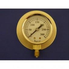 """2"""" pressure gauge, 0 - 300 lbs.  Plain."""